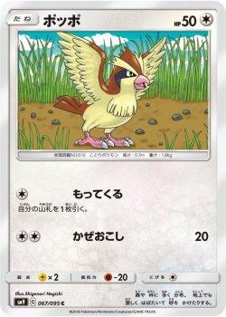 【ポケモンカードゲーム】ポッポ【C】SM9