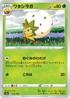 4枚セット【ポケモンカードゲーム】ワタシラガ【-】[S4a]