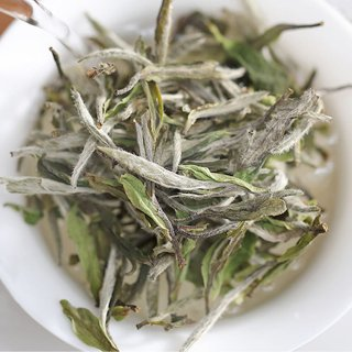 有機白牡丹茶 50g