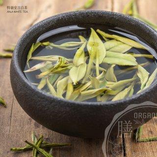 特級安吉白茶 15g