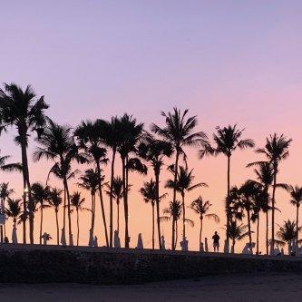 【早割期間中15%OFF】心と身体と地球のためのデトックスリトリートin Canggu, Bali 2020年4月18日土曜日〜22日水曜日 4泊6日