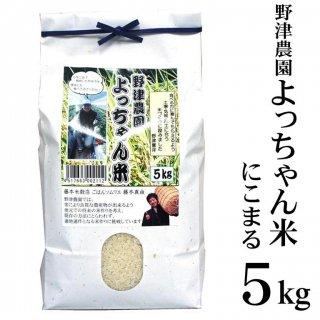 【白米】令和元年産 島根県「野津農園よっちゃん米」5kg(島根県松江市)