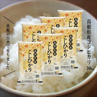 【白米・特価品】30年産 島根県産コシヒカリ白米30kg(10kg×3)