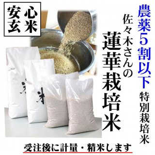 新米予約【安心玄米】農薬5割以下 令和元年産 特別栽培米「佐々木さんの蓮華栽培米」コシヒカリ 玄米1kg (島根県雲南市大東町)精米無料