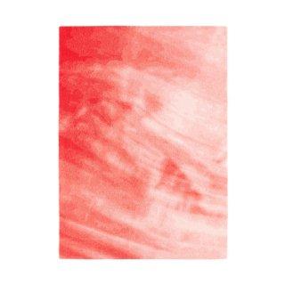 TOCHI (W170×H240) Red
