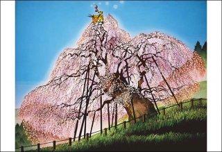 三春の滝桜 -福島-