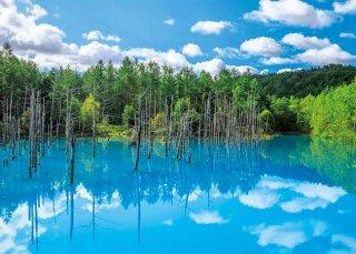 美瑛白金の青い池