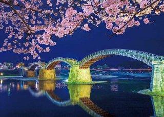 錦帯橋 宵桜