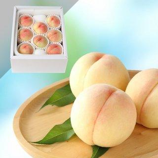 【特級】岡山白桃 7〜8玉 約2キロ