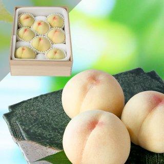 【超特選】清水白桃 7〜8玉(木箱入り)