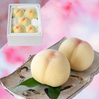 【超特級】清水白桃 5玉 約1.5キロ