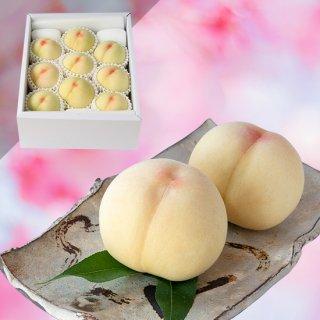 【超特級】清水白桃 9〜10玉 約3キロ
