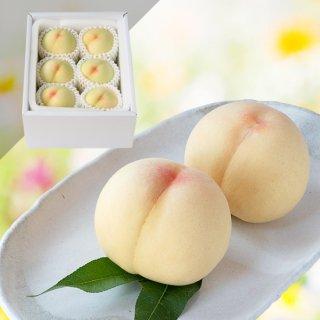 【特級】清水白桃 6玉 約1.5キロ