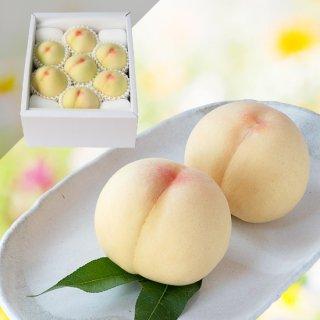 【特級】清水白桃 7〜8玉 約2キロ