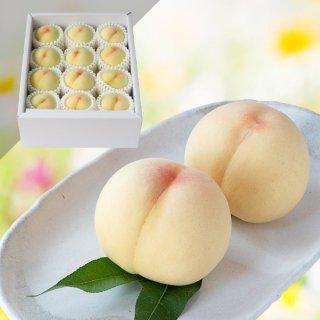 【特級】清水白桃 11〜12玉 約3キロ