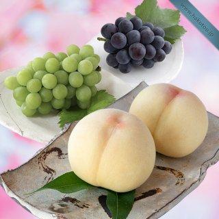 【超特級】詰め合わせ:清水白桃 3玉 ・マスカット大房 1房 ・ピオーネ大房 1房