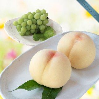 【特級】詰め合わせ:清水白桃 3玉 ・マスカット 1房