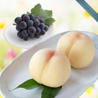 【特級】詰め合わせ:清水白桃 3玉 ・ピオーネ 1房