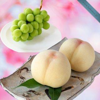 【超特級】詰め合わせ:清水白桃 5玉 ・シャインマスカット 1房