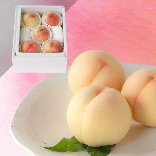 限定50箱【超特級】恵白 5玉 約1.5キロ