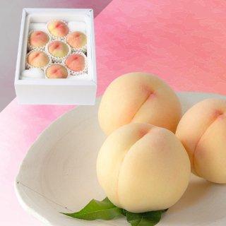 限定50箱【超特級】恵白 6〜7玉 約2キロ