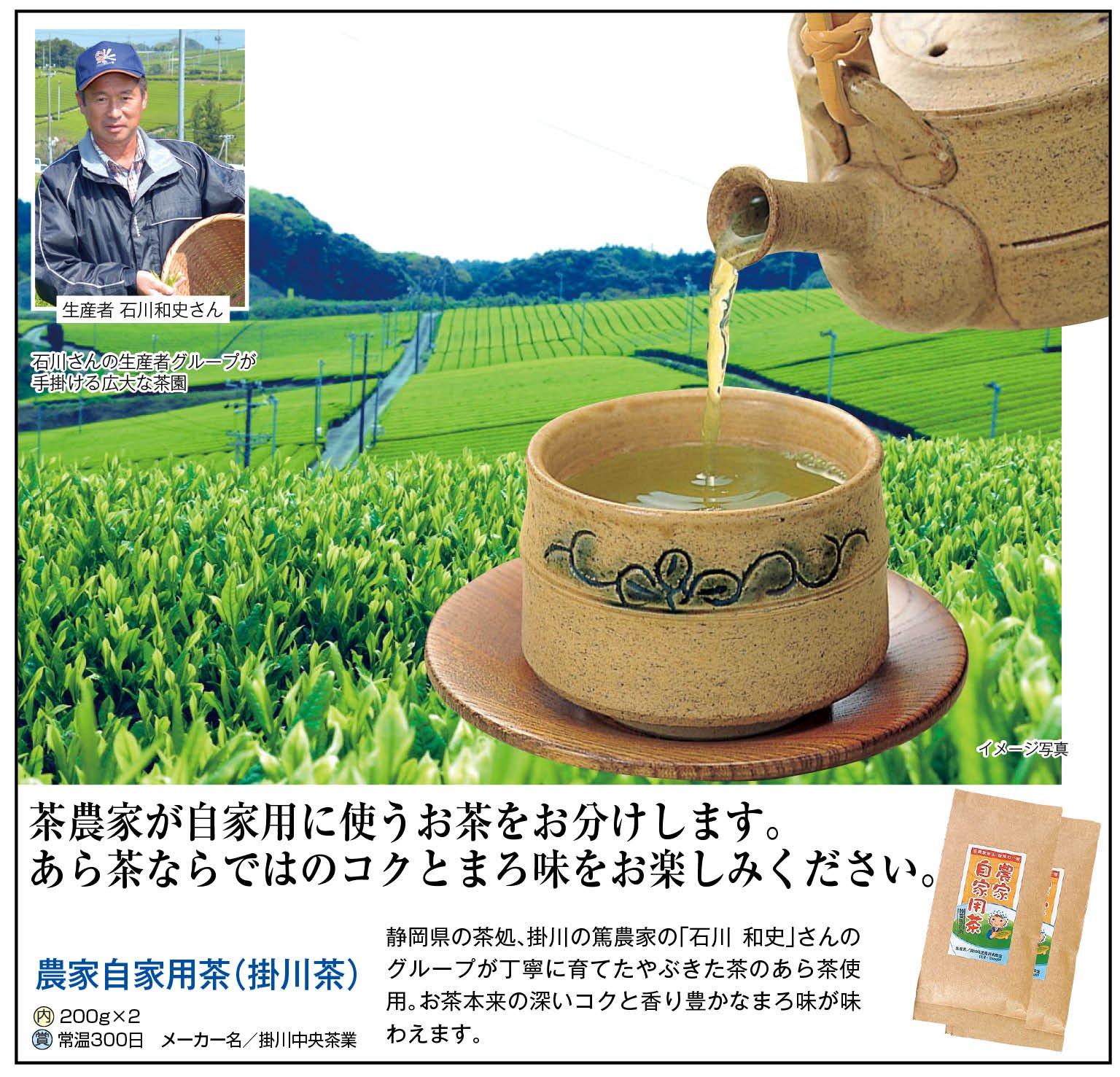 農家自家用茶(掛川茶)200g×2