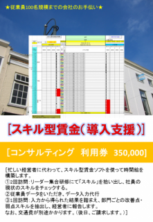 スキル型賃金(導入支援)