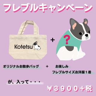 Usisi フレブルキャンペーン☆ お名前入りオリジナルお散歩バッグ&フレブルサイズお洋服 お楽しみバッグ