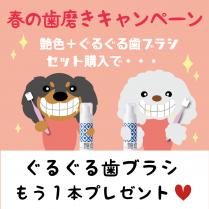 【キャンペーン】艶色マウスウォッシュ・歯ブラシセット