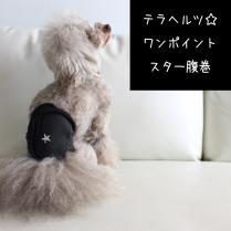 【ネコポス対応】テラヘルツ☆ワンポイントスター腹巻