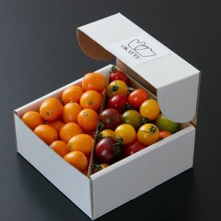 徳島県産 種無し金柑(ぷちまる)&高知県産 カラフルミニトマト
