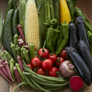 つくば夏の野菜ぎっしりセット