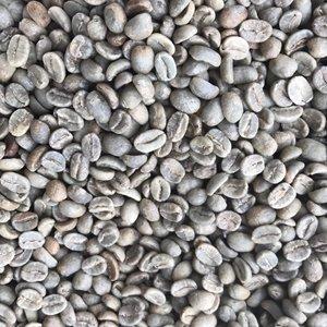 コロンビア スプレモ アンティオキア(生豆 200g)