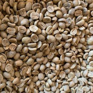 ドミニカ パラオナ カツーラ(生豆 200g)