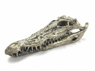 SILVER CROCODILE HEAD -M