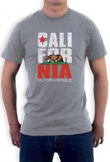 カリフォルニアリパブリック Tシャツ グレー
