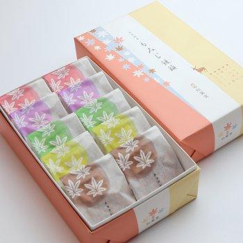 5種10個入り(こしあん・つぶあん・抹茶・クリーム・チョコレート)