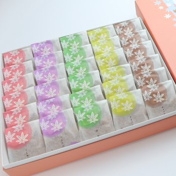 5種30個入り(こしあん・つぶあん・抹茶・クリーム・チョコレート)