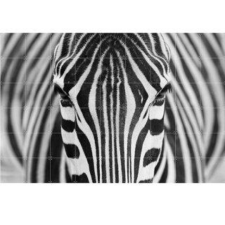 Zebra / IXXI ウォールピクチャー