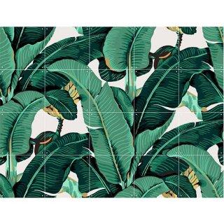 Banana Leaf (ベストセラー) / IXXI ウォールピクチャー