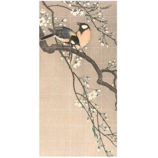 Birds on a Cherry Bench 小原古邨 / IXXI ウォールピクチャー