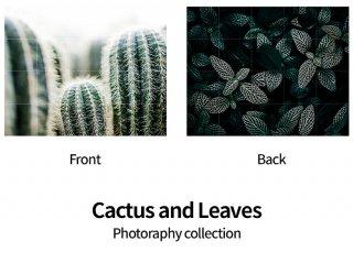 Cactus & Leaves / IXXI ウォールピクチャーsize small 100 x 80cm