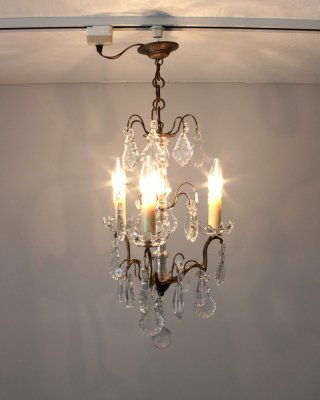 Chandelier<img class='new_mark_img2' src='https://img.shop-pro.jp/img/new/icons5.gif' style='border:none;display:inline;margin:0px;padding:0px;width:auto;' />
