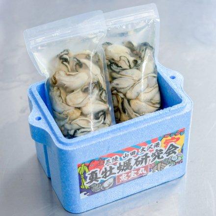 【送料無料】真牡蠣研究会のむきカキ(500g×2個)[加熱用]