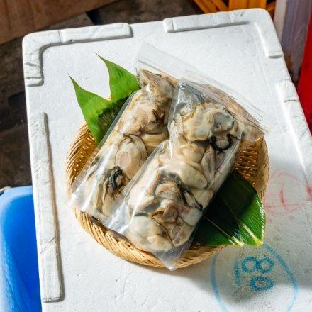 白野さんのむきカキ(500g×2個)[加熱用]【送料込】