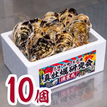 真牡蠣研究会の1年物プレミアムオイスター(10個)[加熱用] ★今だけの特別価格★おうちでオイスターバー【送料込】
