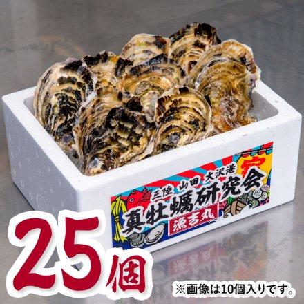真牡蠣研究会の1年物プレミアムオイスター(25個)[加熱用] ★今だけの特別価格★おうちでオイスターバー【送料込】