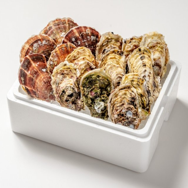 中村敏彦さんの殻付きカキ・ホタテセット(カキ10コ・ホタテ5枚)【送料込】
