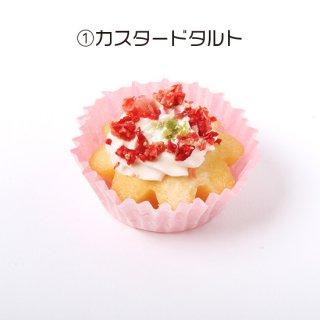 【わんちゃん用】NAMARA!タルト・カスタード (冷凍品)