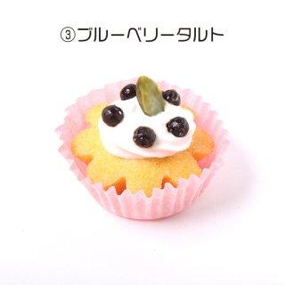 【わんちゃん用】NAMARA!タルト・ブルーベリー (冷凍品)